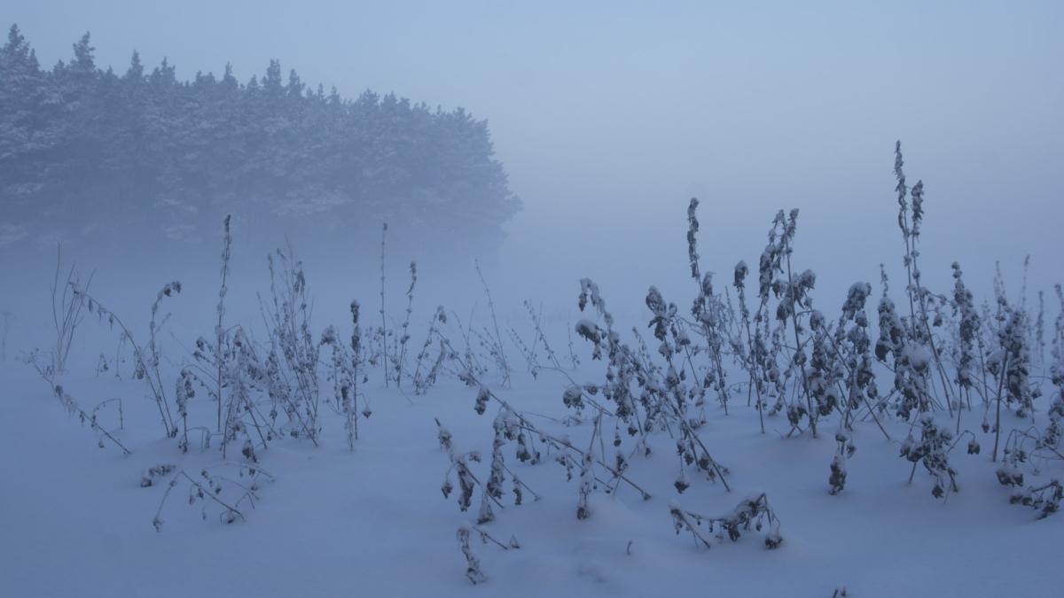 Winter landscape, Poland